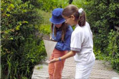 Op 't Rundal komen de kinderen back to basic. Vuile handen van moeder aarde, en leren waar hun voedsel vandaan komt is een must voor hun toekomst.