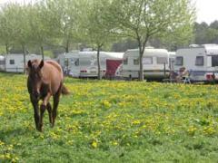 Onze sfeervolle minicamping ligt in een rustige omgeving in Zuidoost-Brabant en heeft uitzicht op het fraaie natuurgebied \'De Biezen\'.
