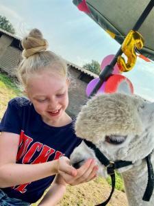 Met een speciaal programma wat wij voor jullie gemaakt hebben ga je op pad met de alpaca's en kom je er meer over te weten.