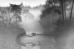 Een workshop fotografie door Bas van Laarhoven is een gezellige bijeenkomst vol leerzame en nuttige fotografietips in een kleine groep.