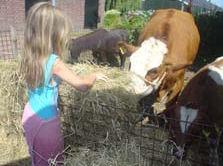 Kom ook 'ns kijken op onze boerderij, geniet van de Brabantse gastvrijheid