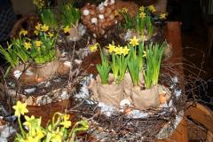 De Boergondische Tuijn Workshops en Arrangementen