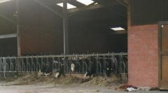 De Menmoerhoeve Kinderboerderij