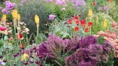 De Tuinen in Demen bieden de ware tuinliefhebber iets bijzonders. Zestien verschillende siertuinen hebben elk hun eigen kleur en sfeer.