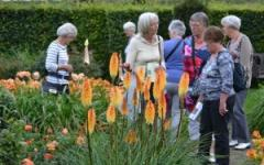 Een leuk uitstapje met een groep. Vanaf eind mei tot en met half septmeber kunnen groepen op afspraak De Tuinen in Demen bezoeken.