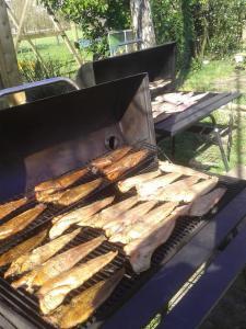 Educatieve viskwekerij De Stroom Groepsovernachting