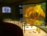 Eicha Museum, Archeologisch Museum voor de Brabantse Kempen Archeologische bezichtiging