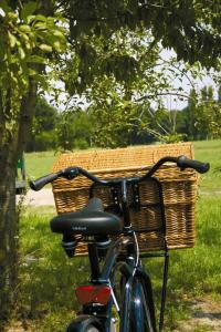 Bij ons bent u aan het juiste adres voor het huren van fietsen, tandems en steppen
