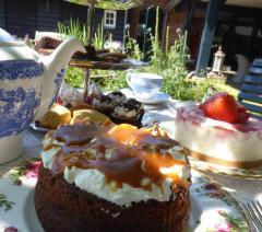 Fietsen door Landgoed de Utrecht of over de Cartierheide en onderweg genieten van een heerlijke high tea op één van de mooiste plekjes in de Kempen.
