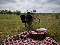 Fietsen door een prachtig stukje natuur en onderweg genieten van een heerlijke uitgebreide picknick.