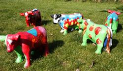 U beschildert een polyester gegoten koe onder begeleiding van Anne-Marie Houthuyzen naar levend model!