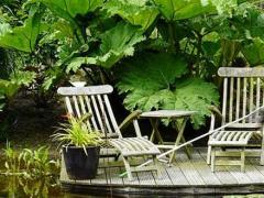 Een tuin van 2500 m², gelegen in het natuurgebied 'Het Groene Woud'.
