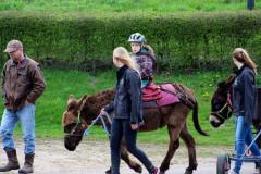Heierhof Ezelwandeling in de Brabantse Kempen