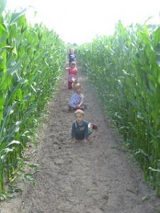Het maisdoolhof is leuk voor jong en oud.