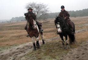Paardrijden in de vrije natuur heeft een ontspannen effect op lichaam en geest en is voor iedereen een avontuur.