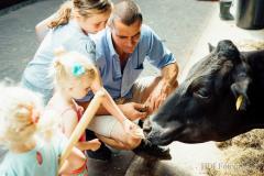 Bij de Lamperse Hei proeft u de Brabantse gezelligheid, u overnachten op de boerderij met het luxe niveau van een hotel!