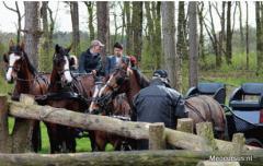 Naast mencursussen, menlessen, span verbetering en paarden betuigen hebben wij een aantal arrangementen voor u in relatie tot het zelf mennen.