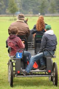 Om met paarden op een verantwoorde en veilige manier om te kunnen gaan moeten de natuurlijke eigenschappen en leefwijze goed begrepen worden.