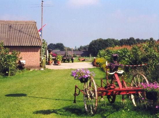Onze minicamping is gelegen in een groene omgeving.