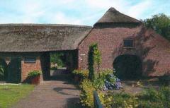 De collectie van het museum bestaat uit volksprenten en voorwerpen van de Kempische volkscultuur.