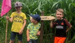 Ontdek het maïsdoolhof van PorcusCampus.