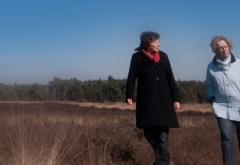 Reijngoud Wandelcoach heeft verschillende wandelcoaching trajecten die wij altijd graag afstemmen op de persoonlijke situatie en gewenste doelstelling