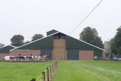 Sport- en spelboerderij Leekzicht Klimmen boven de koeien