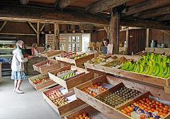 Boerderijwinkel met ekotuin.