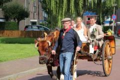 Met onze, in het oog springende en perfect afgerichte koe, verzorgen wij het vervoer voor o.a. huwelijk, optochten, feesten en andere evenementen