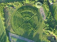 Het druivenlabyrint zelfstandig lopen bij Winery & Herbs kan het gehele jaar.