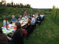 Winery & Herbs Familie dagen, feest, teambuilding en bedrijfsuitj